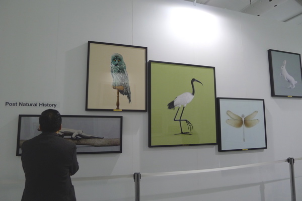 Vincent Fournier's 'Post Natural History' at La Galerie, Art Central.